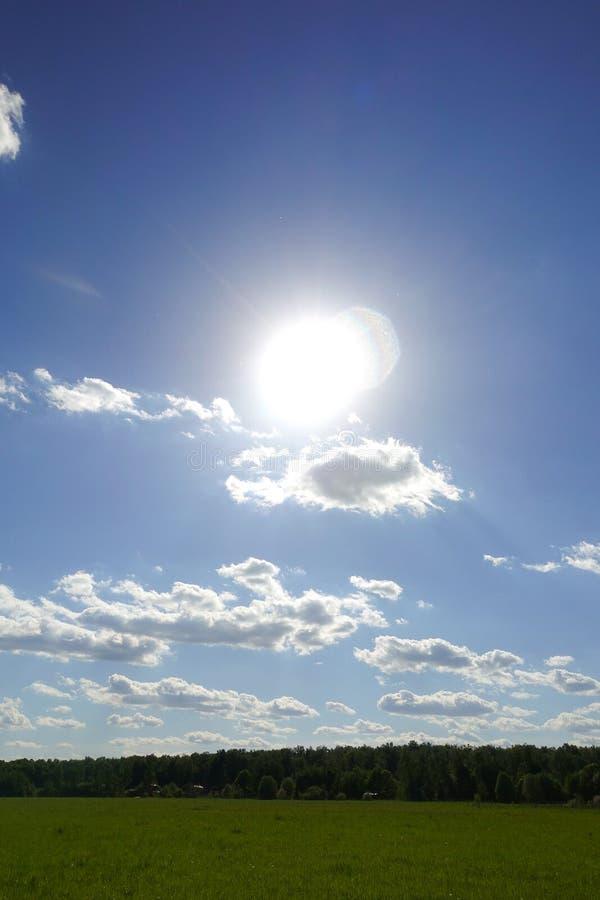 De zon glanst over een grasrijk gebied en betrekt int. hij hemel stock afbeeldingen