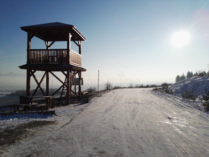De zon van de winter royalty-vrije stock foto's