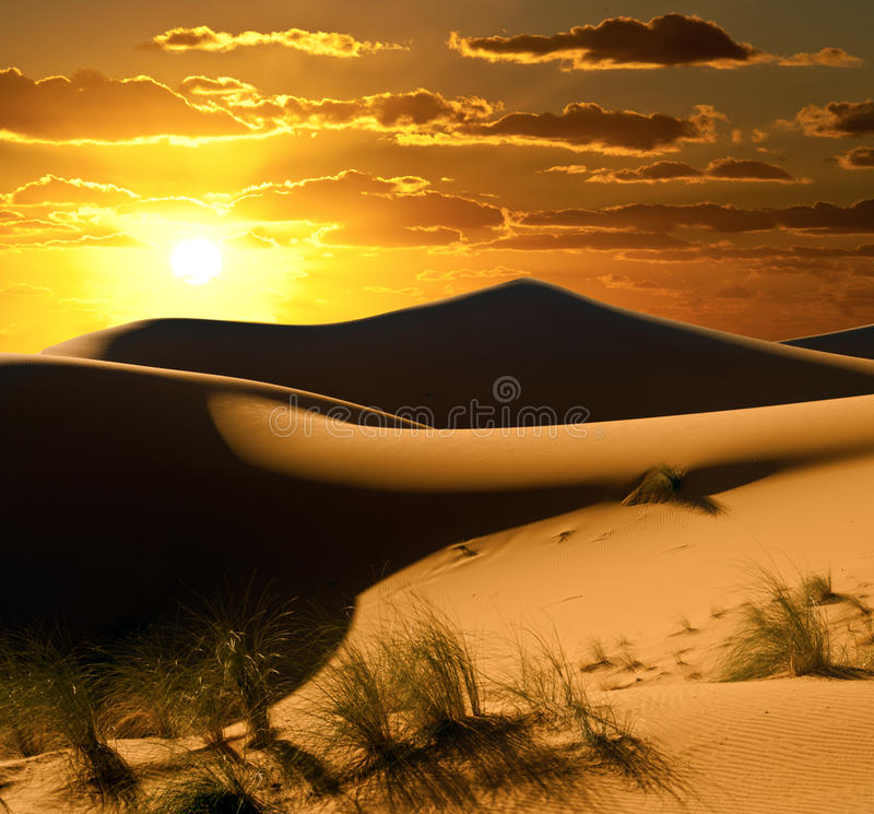 De Zon van de woestijn stock fotografie