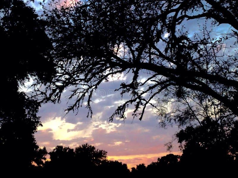 De zon van het heuvelland royalty-vrije stock afbeelding