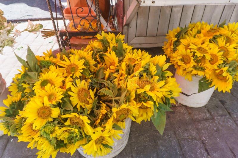 De zonnebloemen verkopen  royalty-vrije stock afbeeldingen