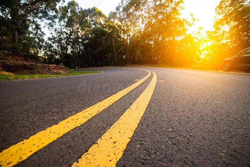 De zonnige boskromme van de asfaltweg met het merken van lijnen in zonsondergangtijd stock foto's