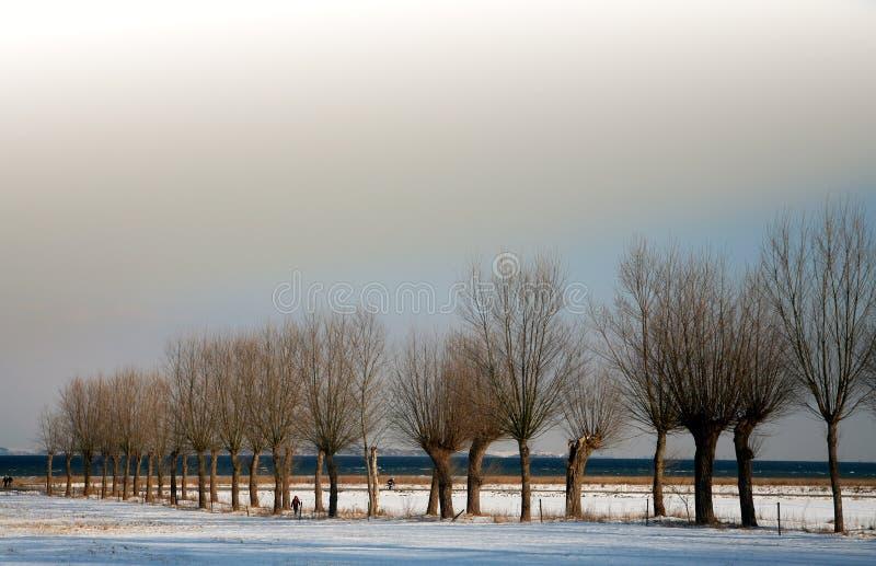 De zonnige winter royalty-vrije stock foto