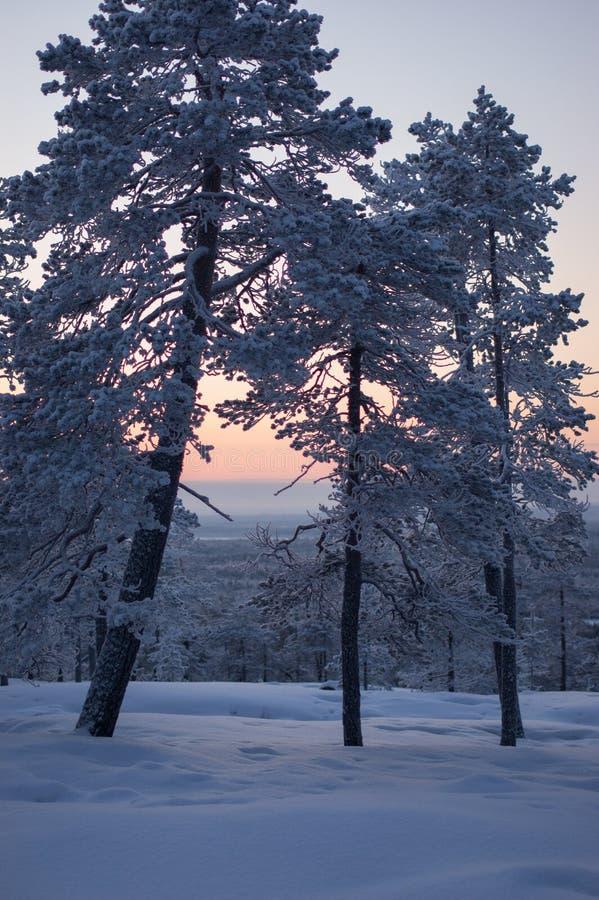 De zonsondergang bovenop viel royalty-vrije stock foto's