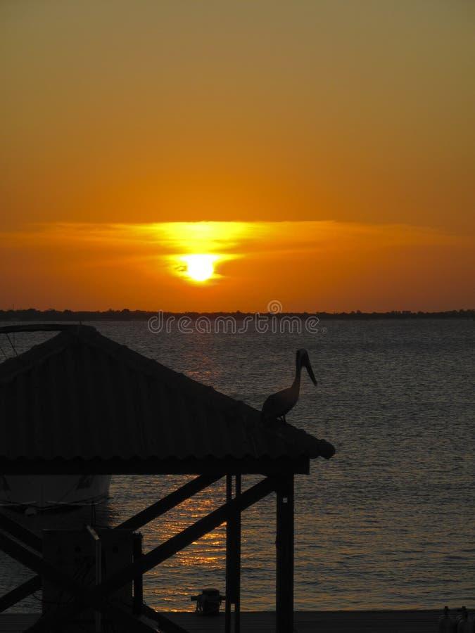 De zonsondergang in Cpatain trekt aan stock fotografie