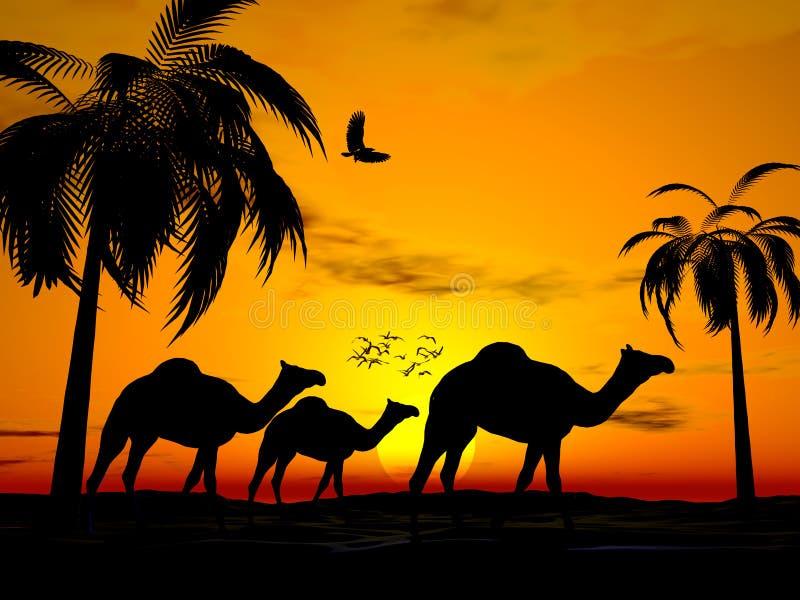De zonsondergang Egypte van de woestijn vector illustratie