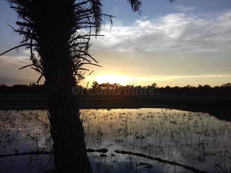 De zonsondergang in de herfst royalty-vrije stock afbeelding