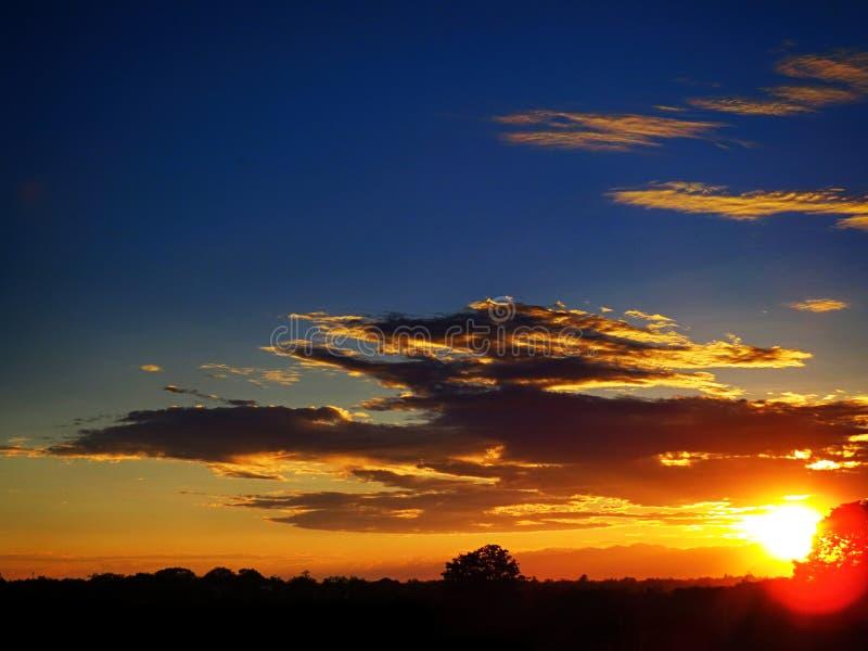 De zonsondergang met blauwe hemel en de oranje wolken die door witte zon en rode brand worden verlicht gloeien op zwart boomhout stock afbeelding