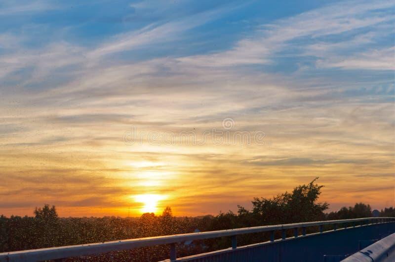 De zonsondergang op de achtergrond van mosquitoesa, troep van muggen in de stralen van de het plaatsen zon royalty-vrije stock foto's