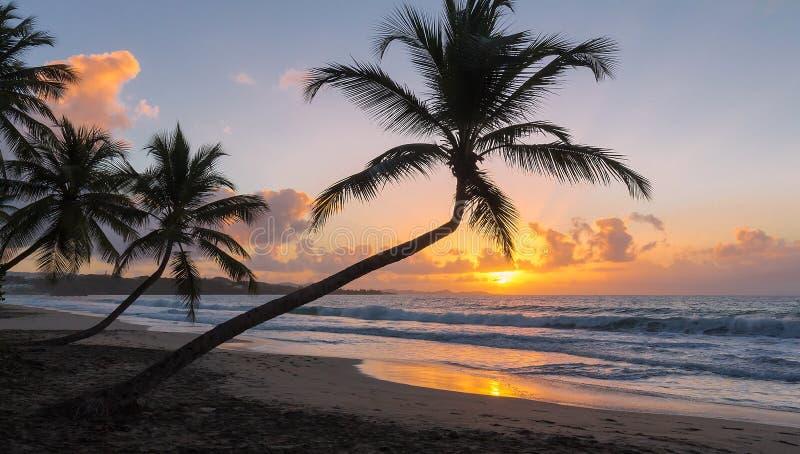 De zonsondergang op het eiland van Martinique, de Franse Antillen royalty-vrije stock afbeelding