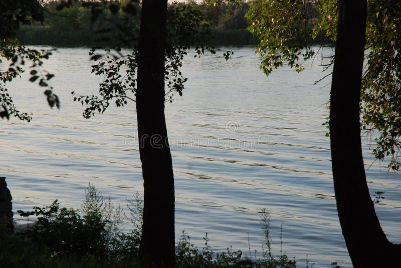 De zonsondergang op trekt rivier aan Vrede en stil Grote rivier Bomen over het water stock afbeeldingen