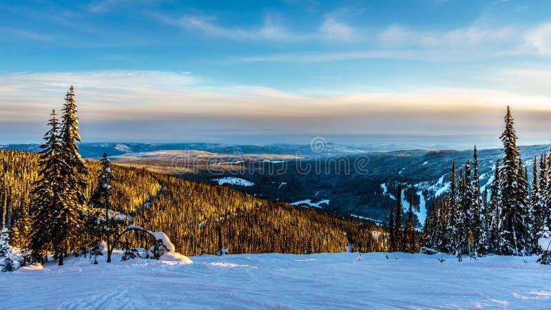 De zonsondergang over de Sneeuw behandelde bomen in het de winterlandschap van hoge alpien bij de skitoevlucht van Zonpieken royalty-vrije stock afbeeldingen