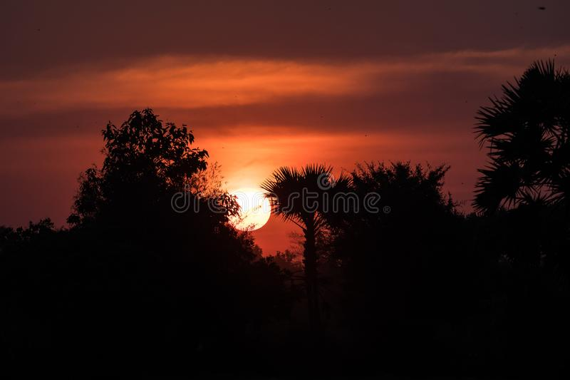 De zonsondergang in tropisch platteland, Siem oogst, Kambodja stock foto