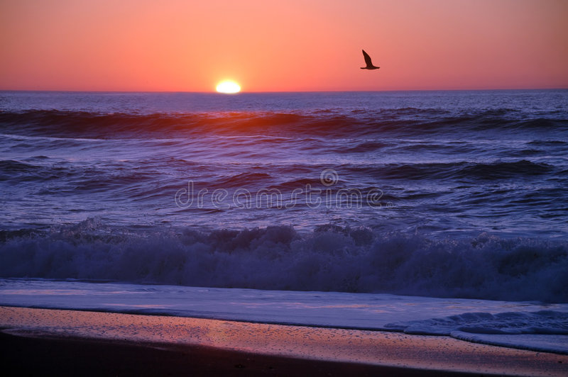 De Zonsondergang van Californië stock afbeelding