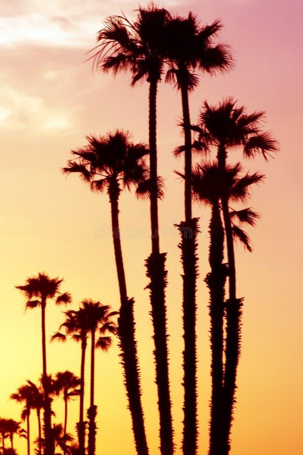 De zonsondergang van Californië royalty-vrije stock foto
