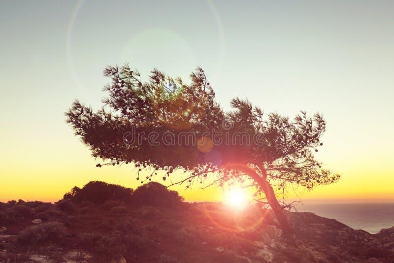 De zonsondergang van Cyprus stock afbeelding