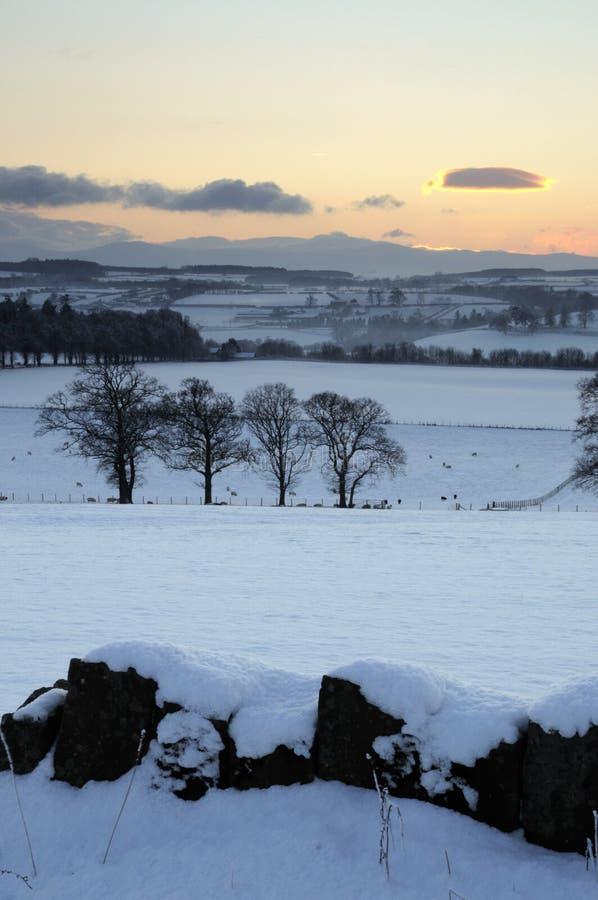 De Zonsondergang van de Sneeuw van de winter stock afbeeldingen