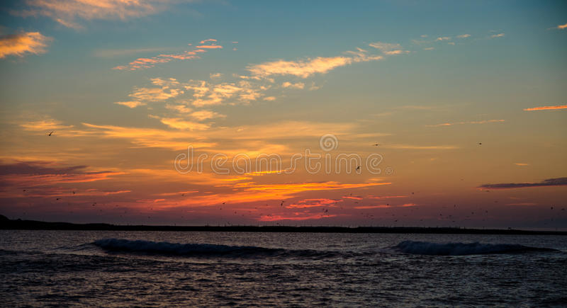 De zonsondergang van de strandzonsopgang met oceaangolven en vliegende vogels stock foto