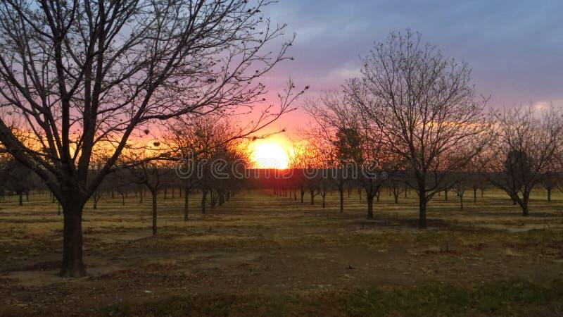De zonsondergang van de winter stock fotografie