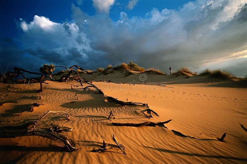 De zonsondergang van de woestijn