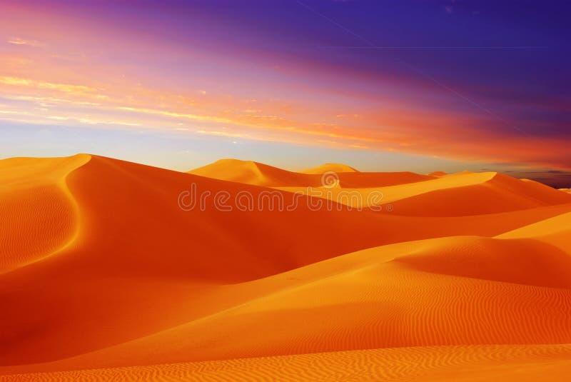 De zonsondergang van de woestijn royalty-vrije stock foto's