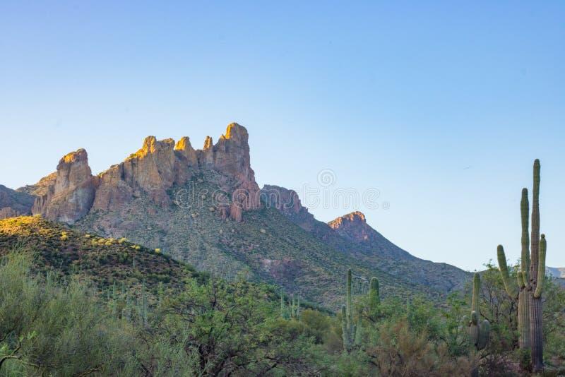 De Zonsondergang van de woestijnschoonheid stock foto's