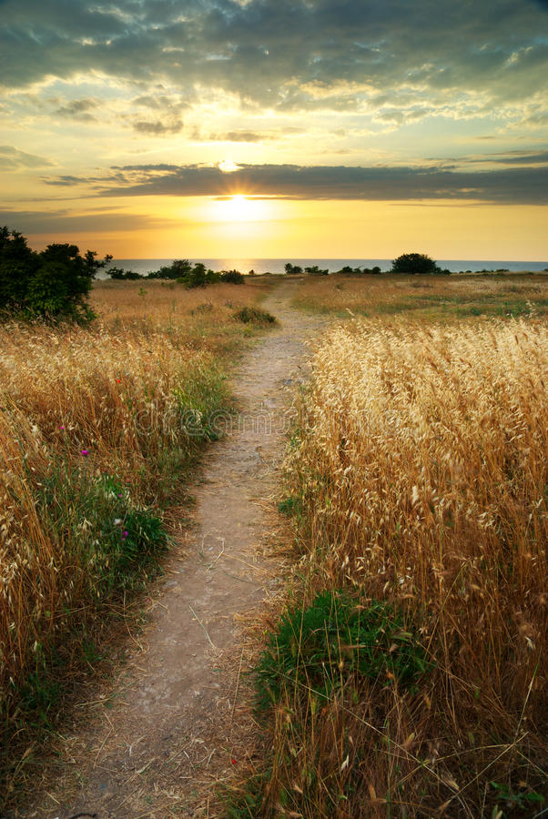 De zonsondergang van de zomer. stock foto's