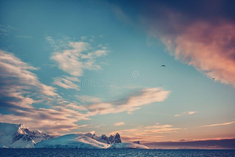 De zonsondergang van de zomer in Antarctica stock fotografie