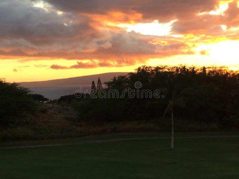 De Zonsondergang van Hawaï royalty-vrije stock foto