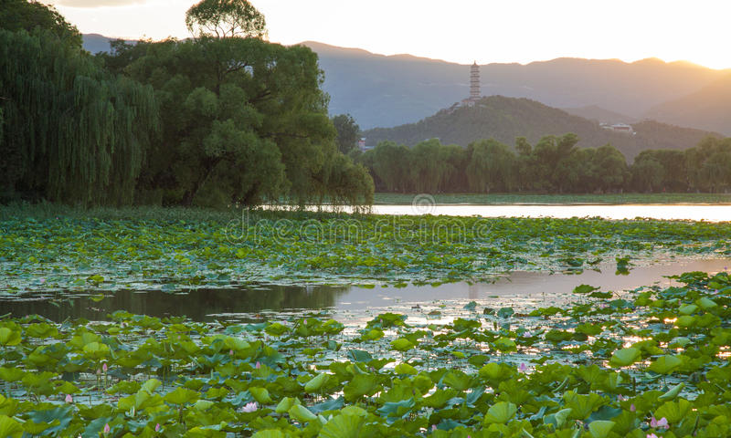 De zonsondergang van het de zomerpaleis stock afbeeldingen