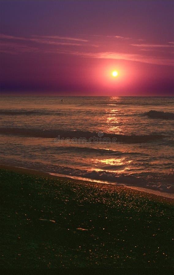 De Zonsondergang van het strand op de Zwarte Zee stock afbeelding