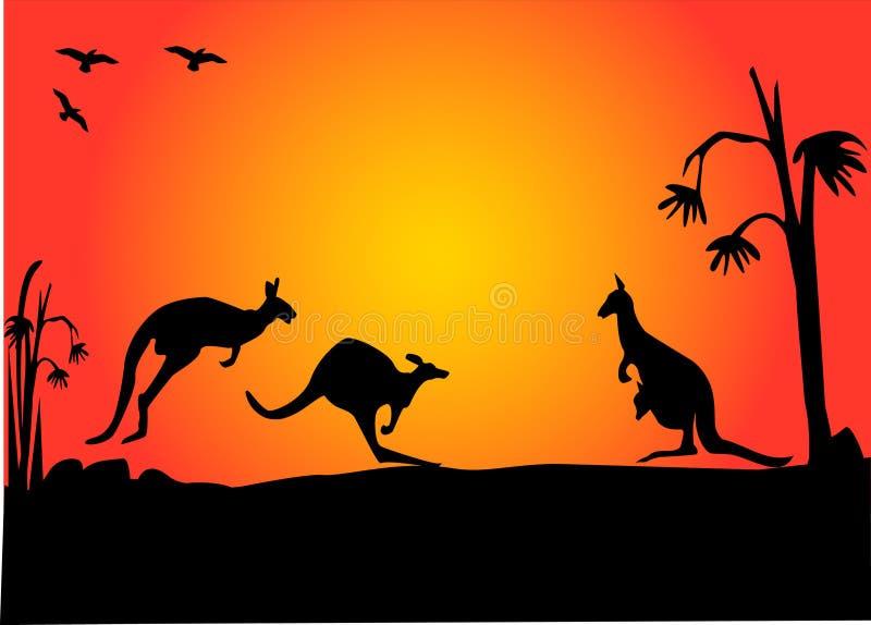 De zonsondergang van Kangroo