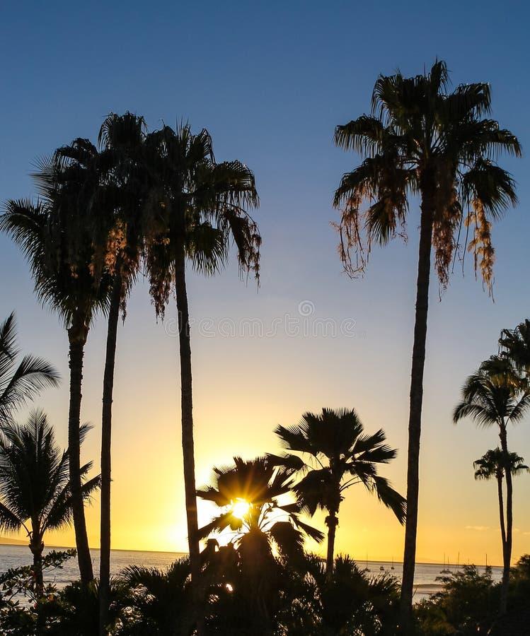 De zonsondergang van Maui in Hawaï stock foto's