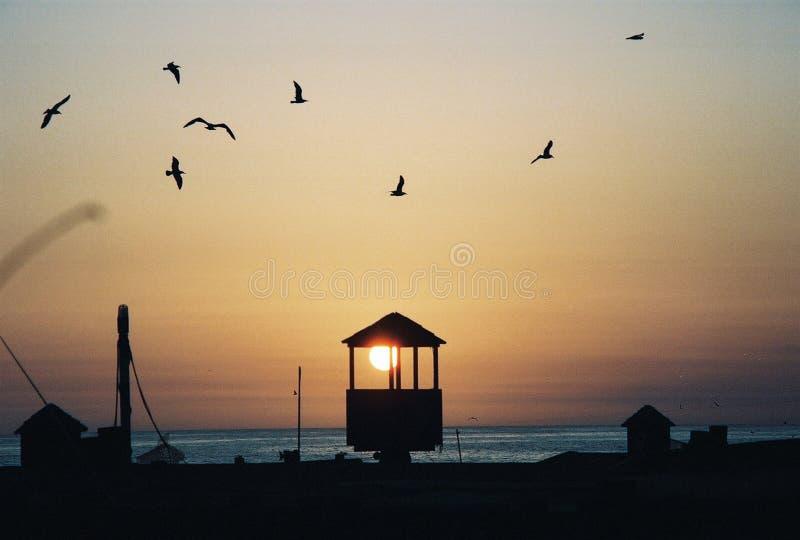 De Zonsondergang van Nieuwpoort stock afbeeldingen