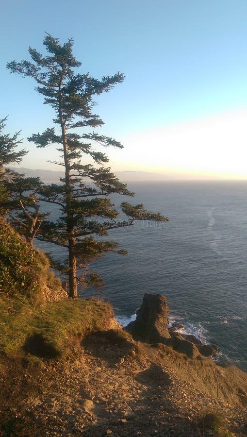 De Zonsondergang van Oregon royalty-vrije stock fotografie