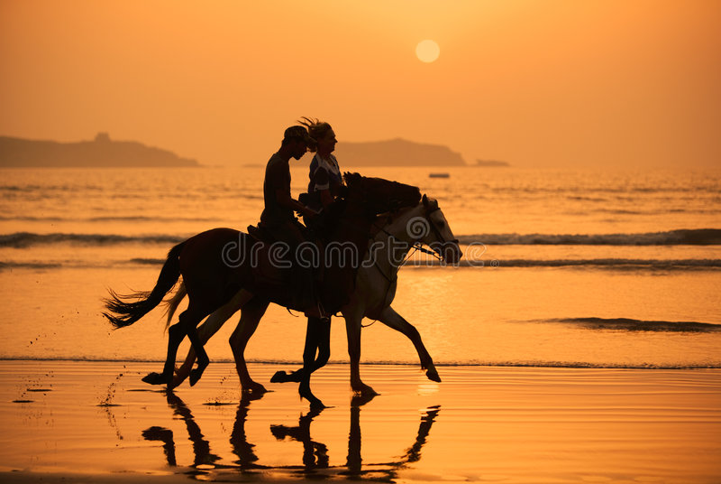 De Zonsondergang van paarden stock afbeelding