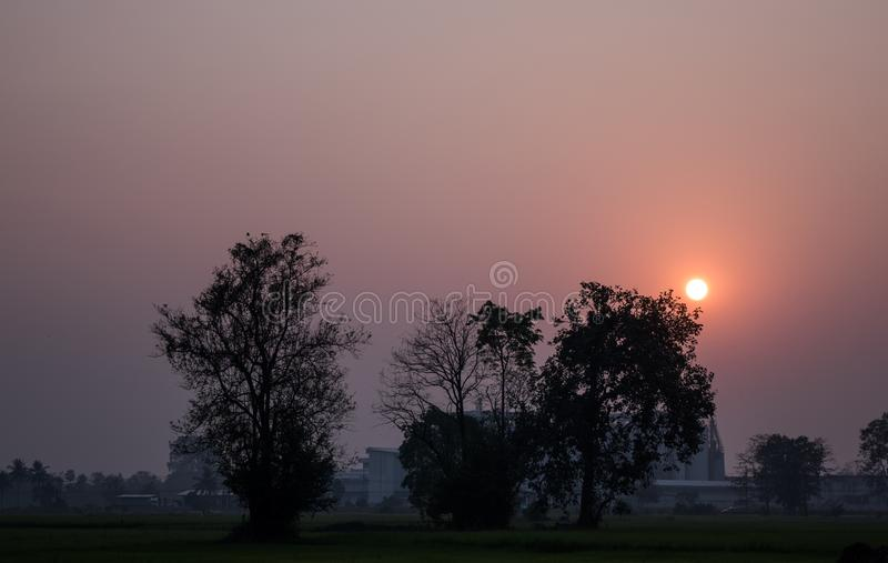 De zonsonderganghemel en het silhouet van boom in het platteland van Thailand kijken vers en mooi stock afbeeldingen