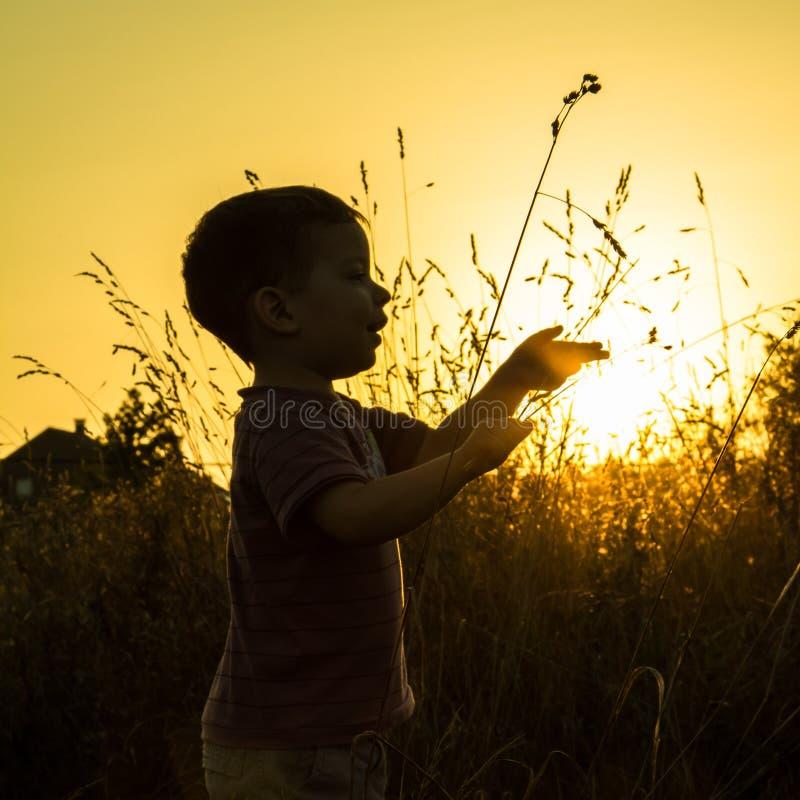 De zonsondergangsilhouet van het kind stock afbeelding