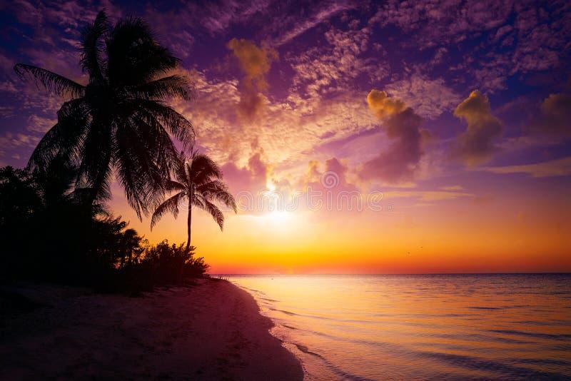De zonsondergangstrand Mexico van het Holboxeiland royalty-vrije stock afbeelding