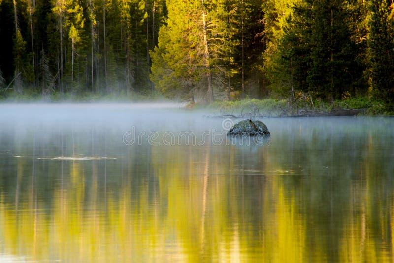 De zonsopgang steekt het water en de bossen in het Nationale Park van Yellowstone aan. stock foto
