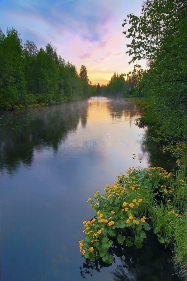 De Zonsopgang van de zomer stock afbeeldingen