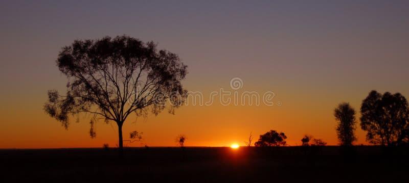 De zonsopgang van het binnenland in Australië royalty-vrije stock foto's