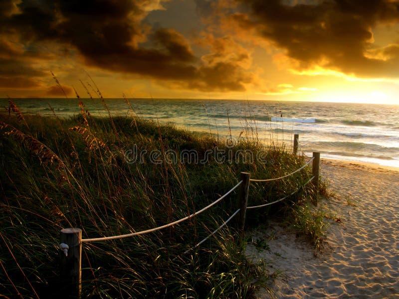 De zonsopgang van het strand