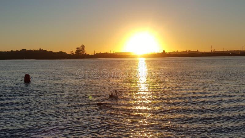 De zonsopgang van Swansea royalty-vrije stock fotografie