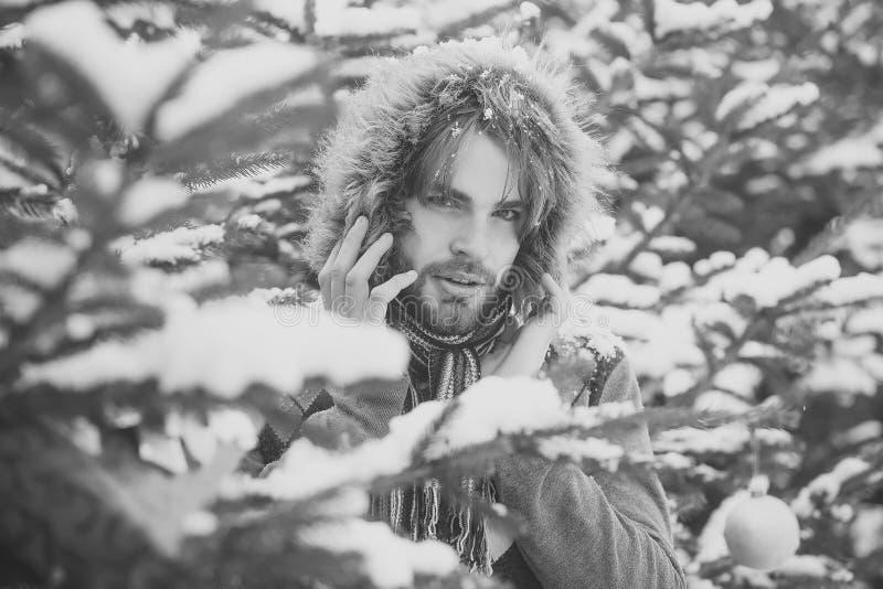 De Zorg van de de winterhuid Kerel op sparren op sneeuwaard stock foto