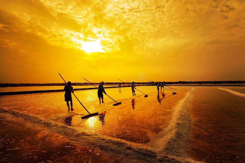 De zoute landbouw royalty-vrije stock foto's