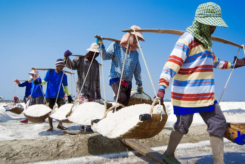 De zoute landbouw in Thailand royalty-vrije stock foto