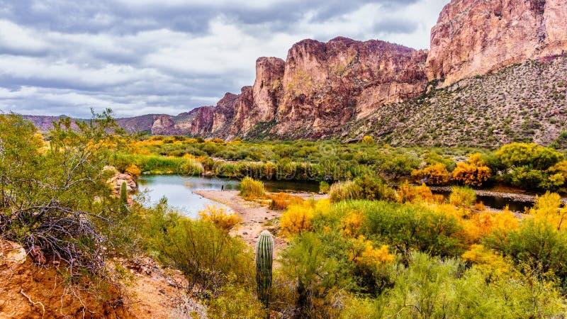 De Zoute Rivier en de omringende bergen in Arizona stock foto