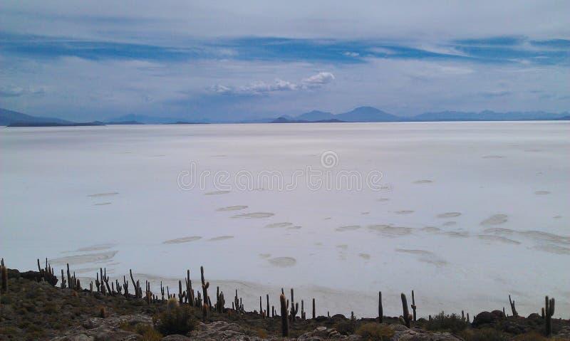De Zoute Vlakten van Bolivië, Salar de Uyuni stock foto's