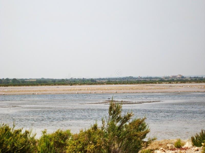 De Zoutmeren van zoutmijnses, Majorca stock afbeeldingen